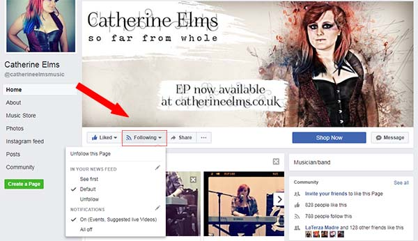 catherine elms facebook algorithm
