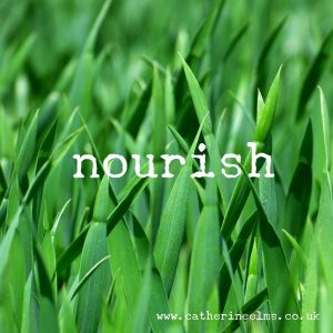 nourish Catherine Elms word of the year