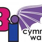 BiFest Wales